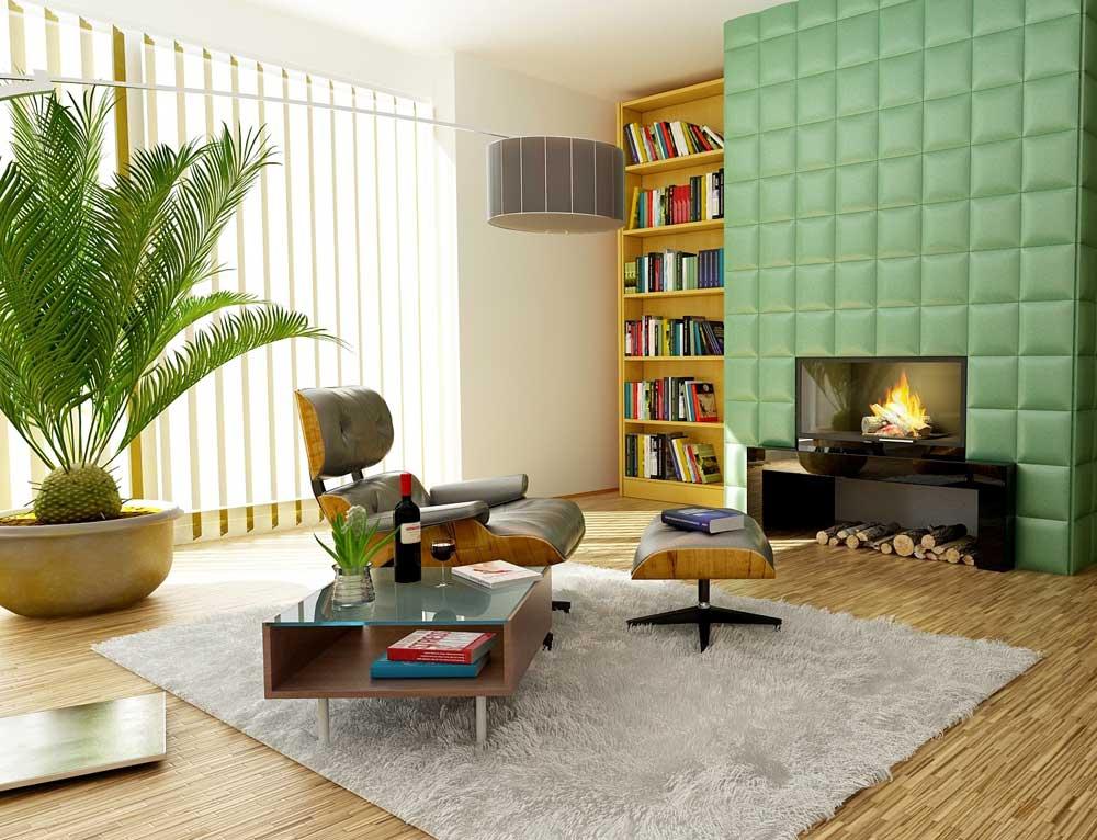 Liz Stroud - Declutter Maven Asheville Organizing living room